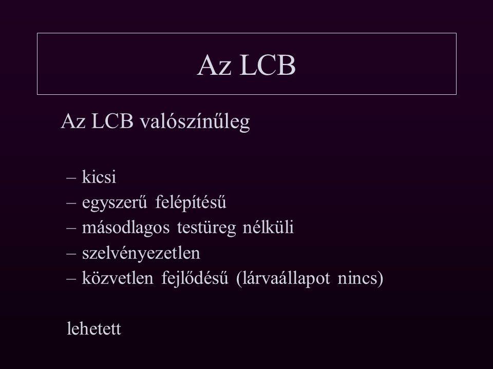 Az LCB Az LCB valószínűleg kicsi egyszerű felépítésű