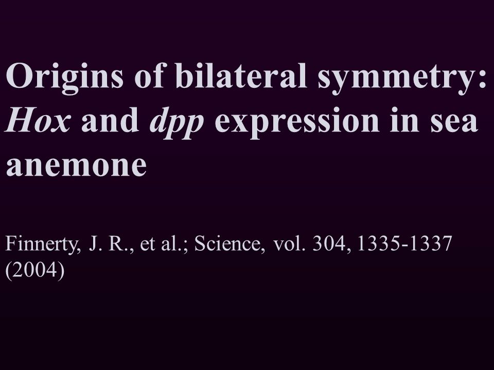 Origins of bilateral symmetry: Hox and dpp expression in sea anemone