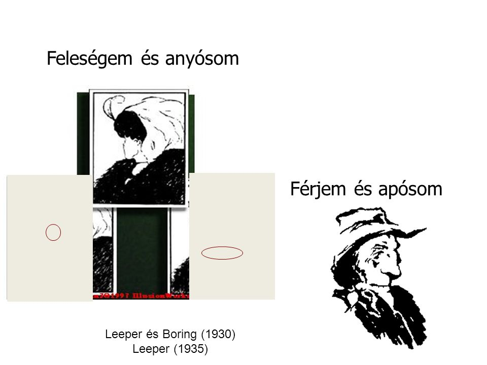 Feleségem és anyósom Férjem és apósom Leeper és Boring (1930)