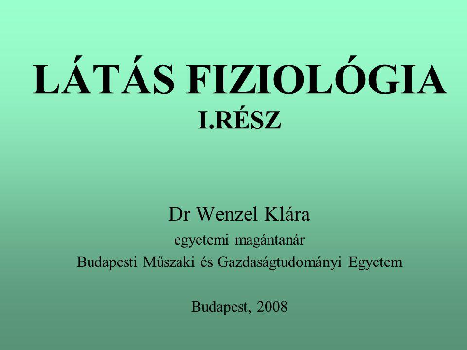 LÁTÁS FIZIOLÓGIA I.RÉSZ
