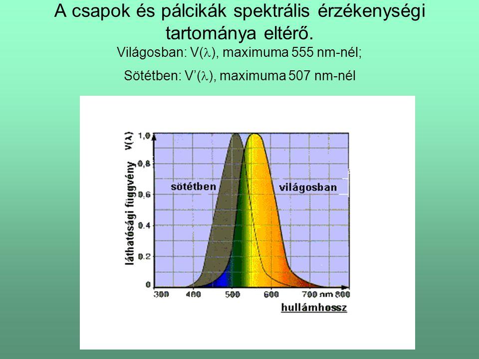 A csapok és pálcikák spektrális érzékenységi tartománya eltérő