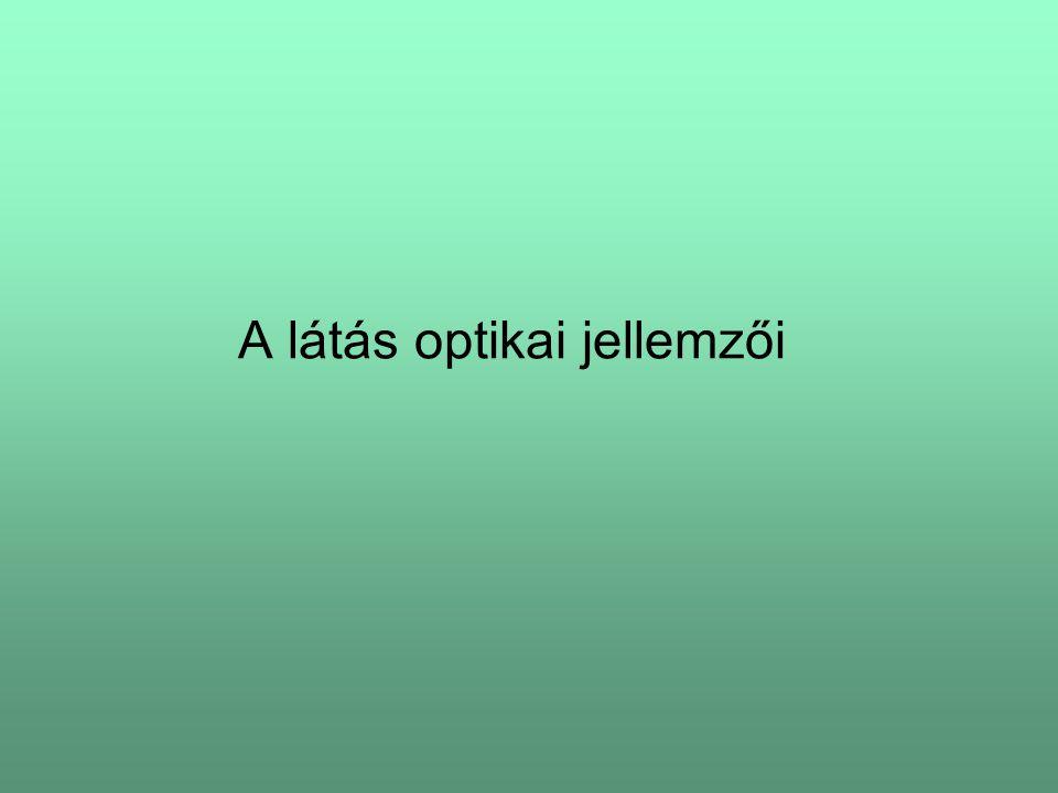 A látás optikai jellemzői