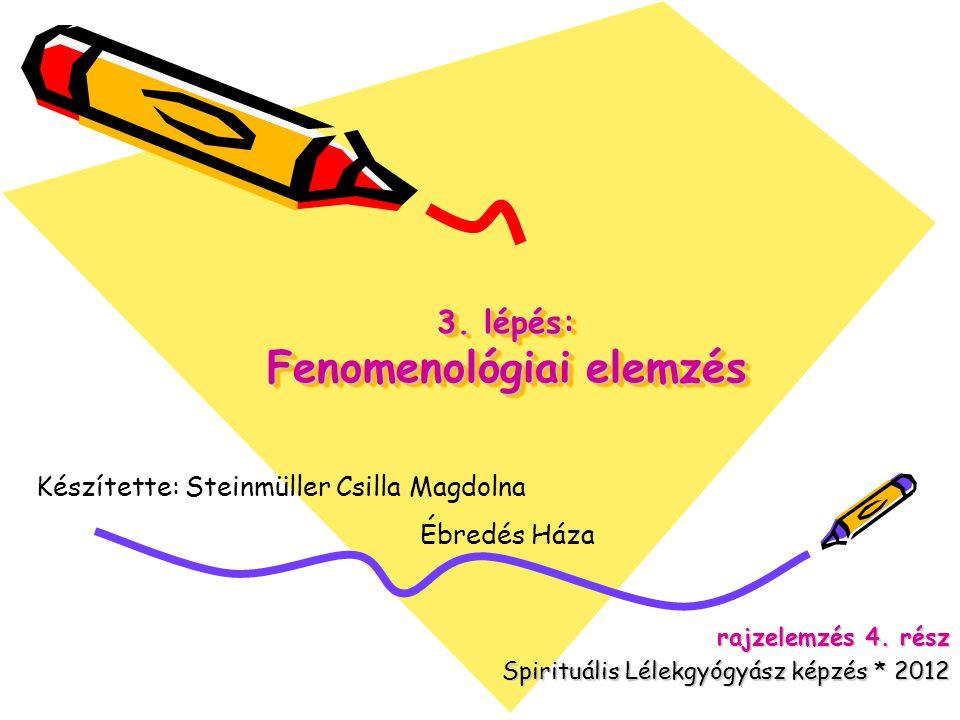 3. lépés: Fenomenológiai elemzés