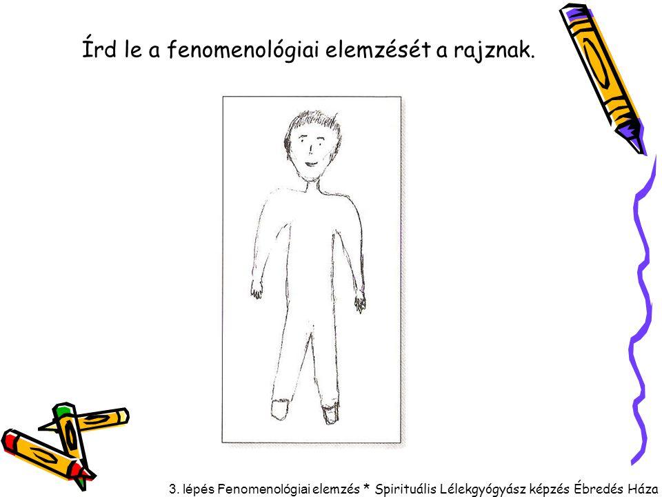 Írd le a fenomenológiai elemzését a rajznak.