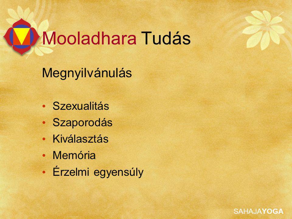 Mooladhara Tudás Megnyilvánulás Szexualitás Szaporodás Kiválasztás