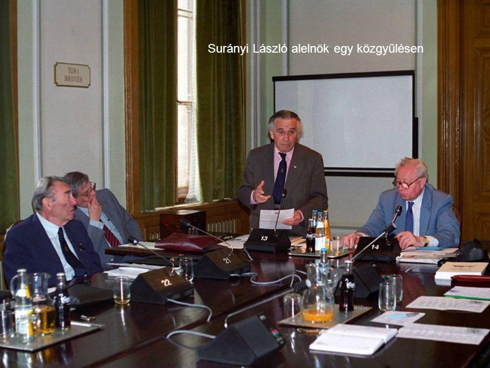 Surányi László alelnök egy közgyűlésen