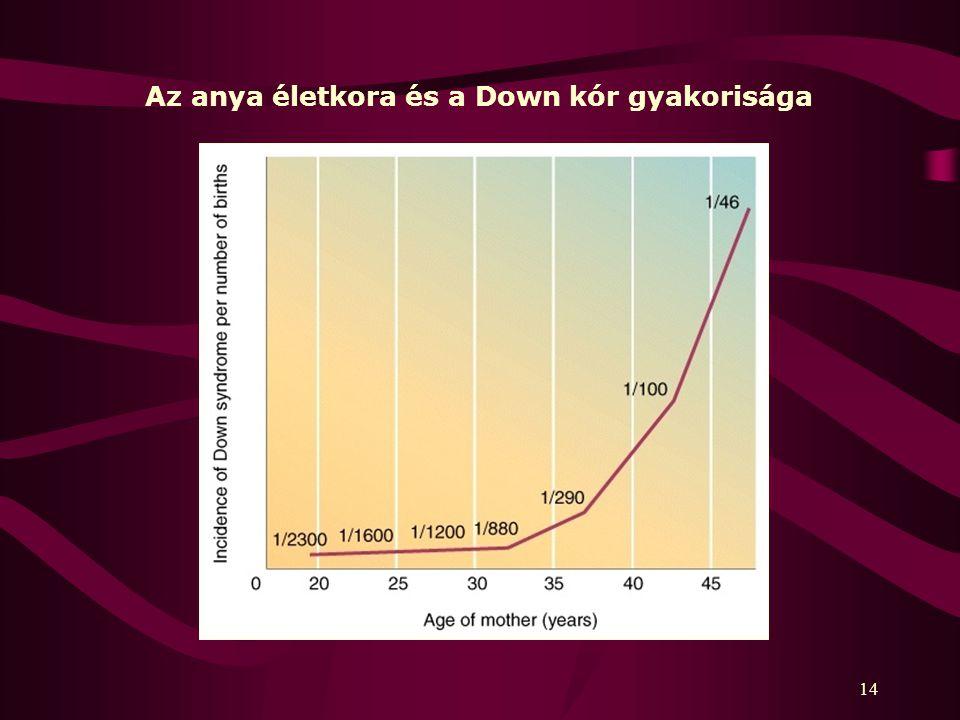 Az anya életkora és a Down kór gyakorisága