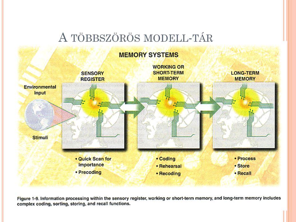 A többszörös modell-tár