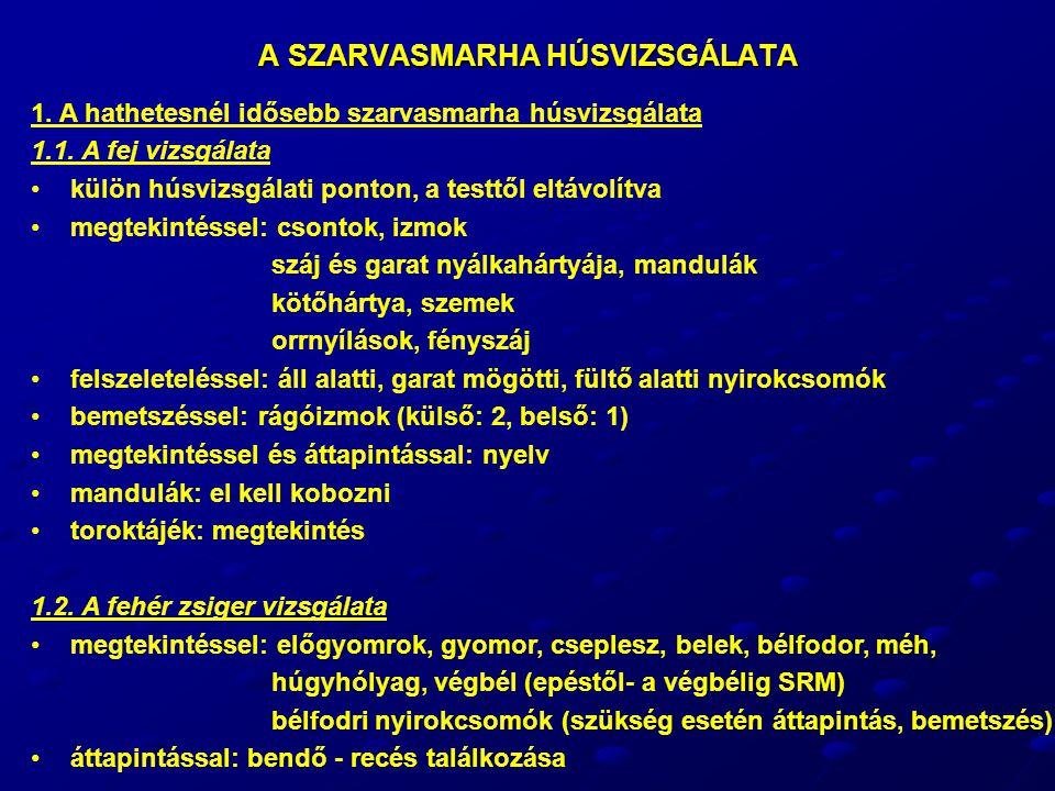A SZARVASMARHA HÚSVIZSGÁLATA