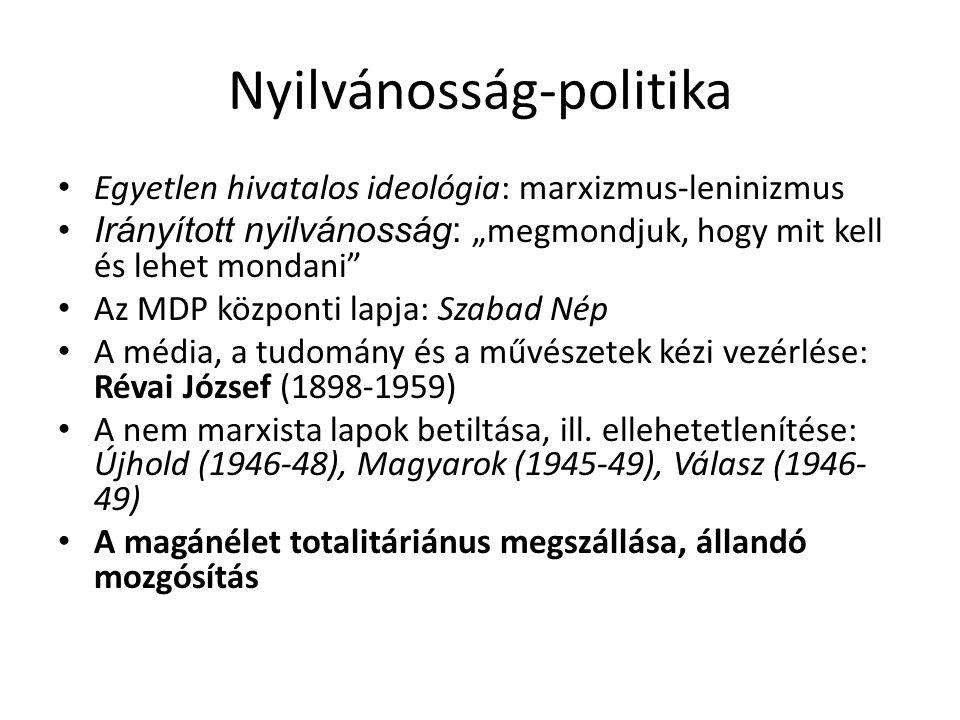 Nyilvánosság-politika