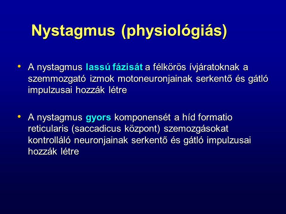 Nystagmus (physiológiás)