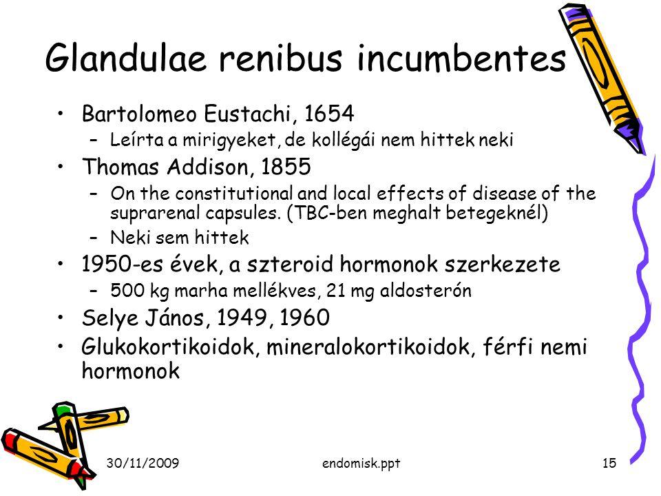 Glandulae renibus incumbentes