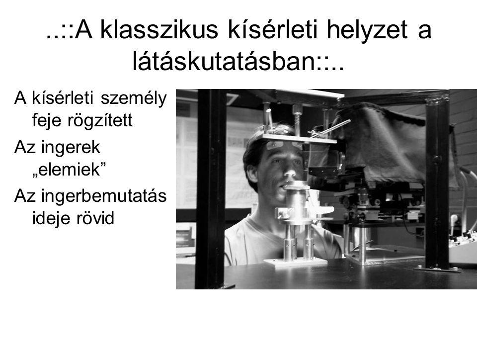 ..::A klasszikus kísérleti helyzet a látáskutatásban::..