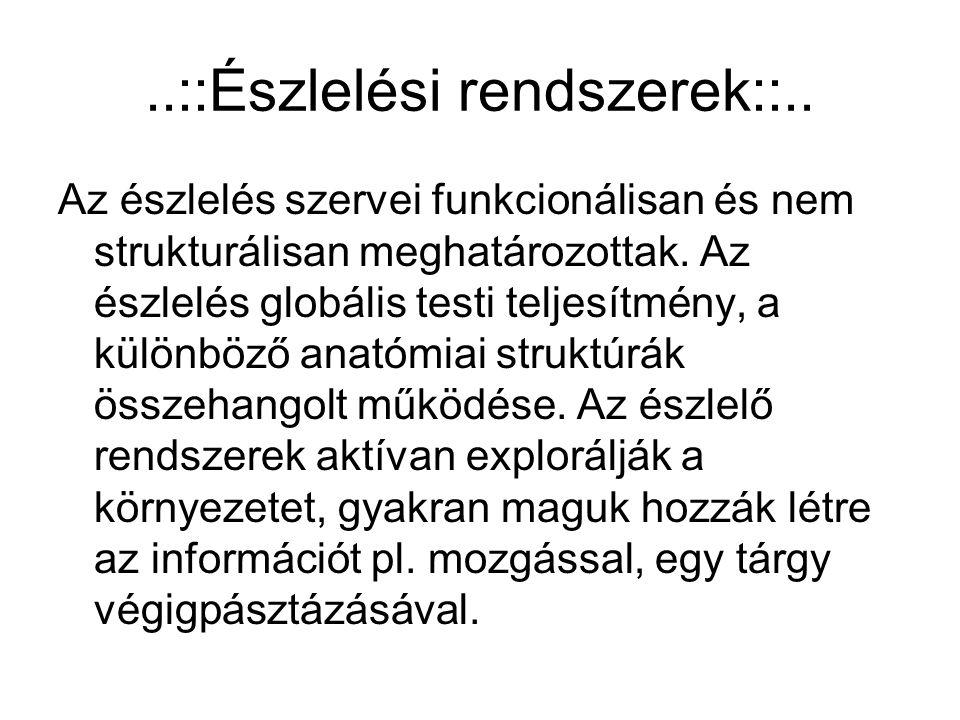 ..::Észlelési rendszerek::..