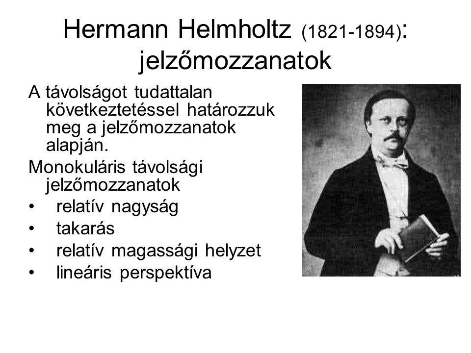 Hermann Helmholtz (1821-1894): jelzőmozzanatok