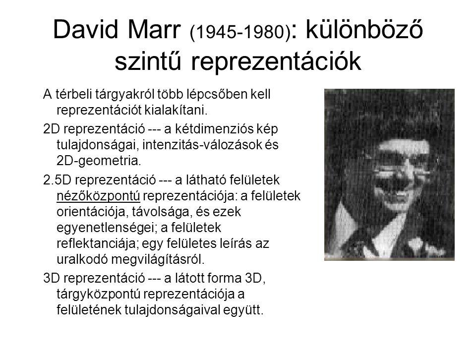 David Marr (1945-1980): különböző szintű reprezentációk