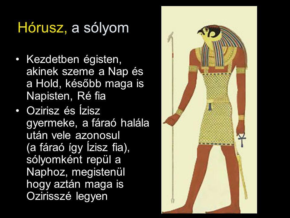 Hórusz, a sólyom Kezdetben égisten, akinek szeme a Nap és a Hold, később maga is Napisten, Ré fia.