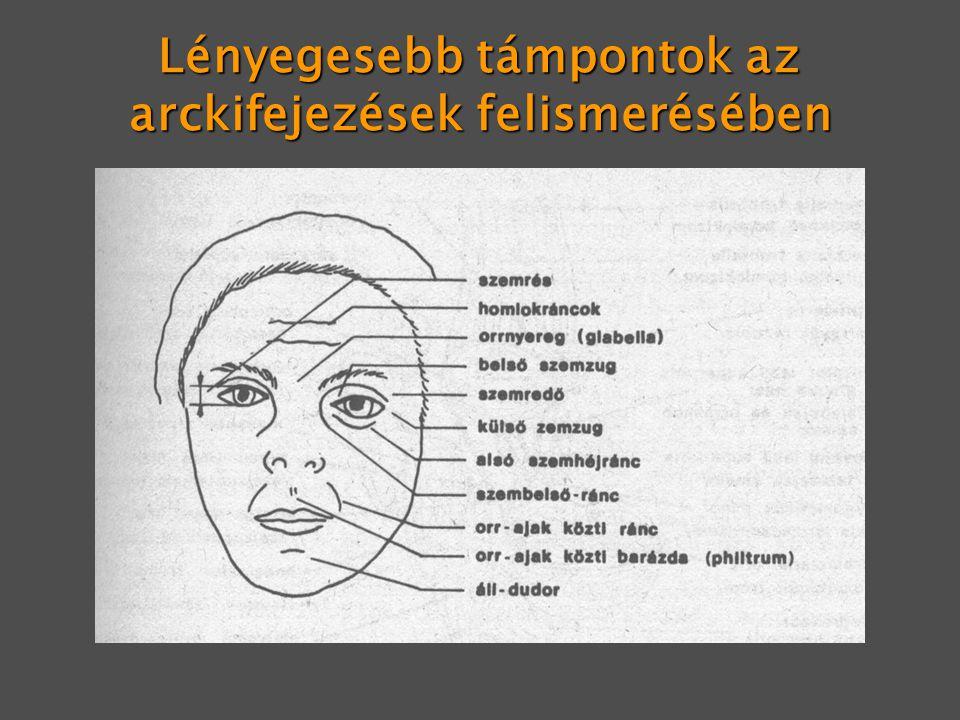 Lényegesebb támpontok az arckifejezések felismerésében