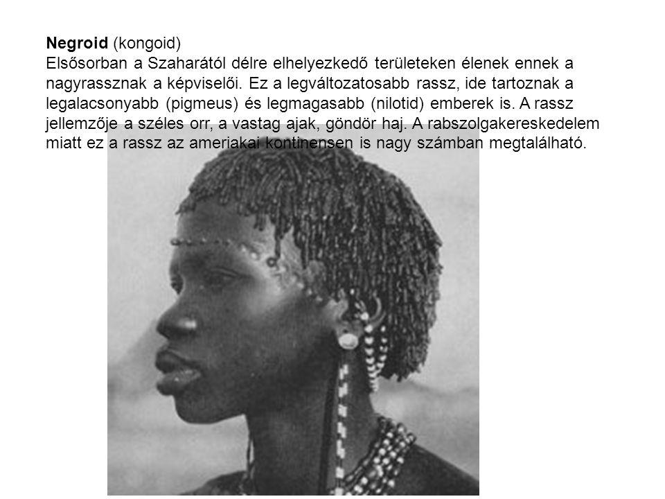 Negroid (kongoid) Elsősorban a Szaharától délre elhelyezkedő területeken élenek ennek a nagyrassznak a képviselői.