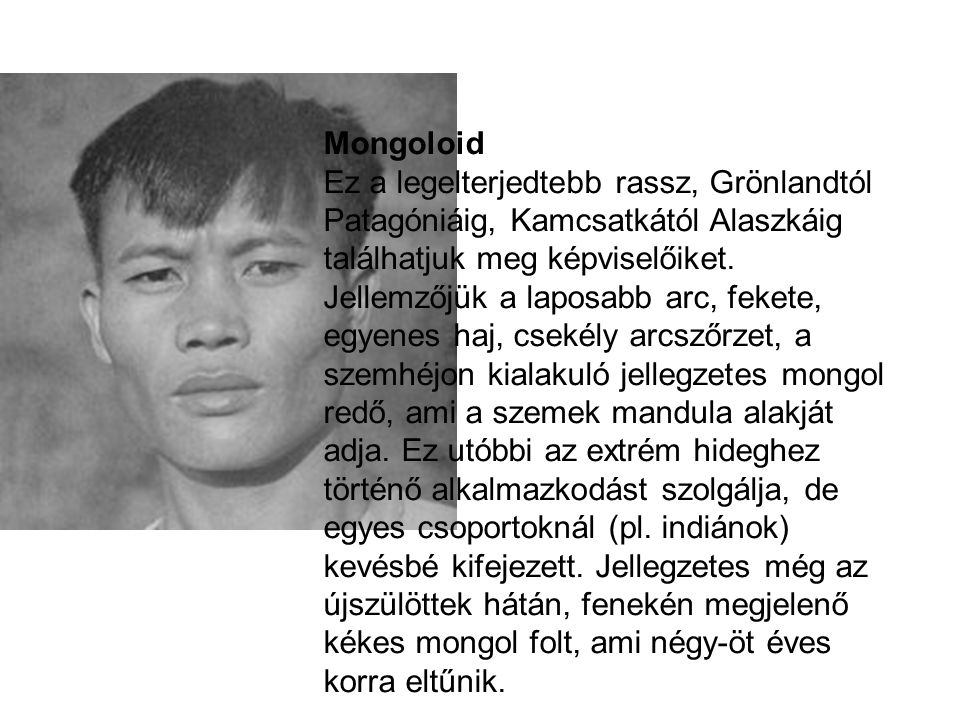 Mongoloid Ez a legelterjedtebb rassz, Grönlandtól Patagóniáig, Kamcsatkától Alaszkáig találhatjuk meg képviselőiket.