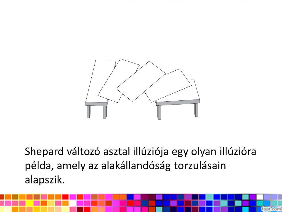 Shepard változó asztal illúziója egy olyan illúzióra példa, amely az alakállandóság torzulásain alapszik.