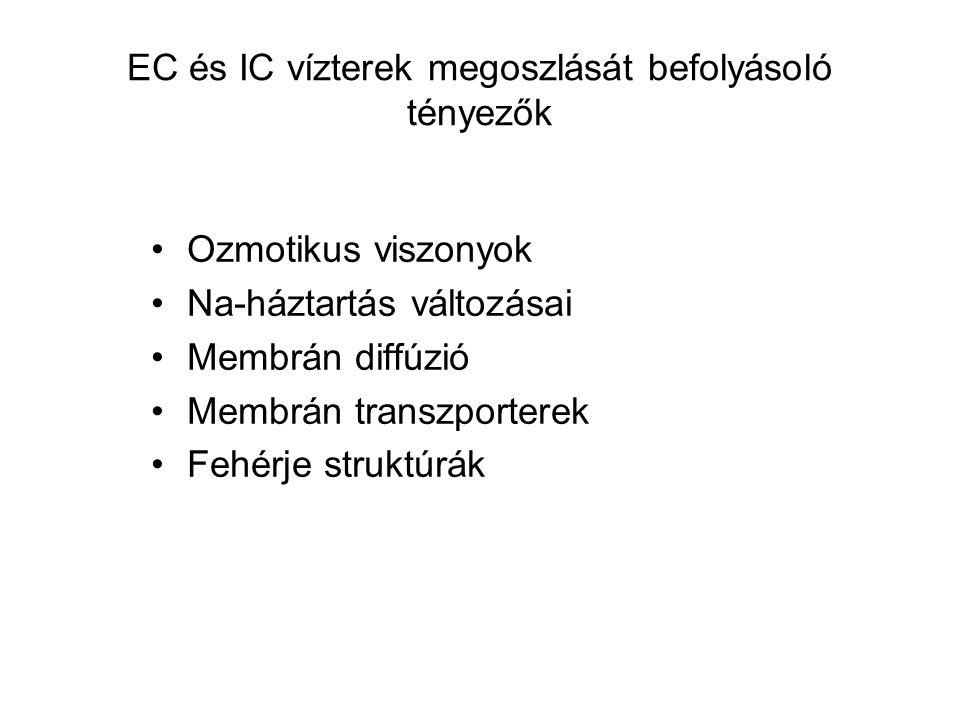 EC és IC vízterek megoszlását befolyásoló tényezők
