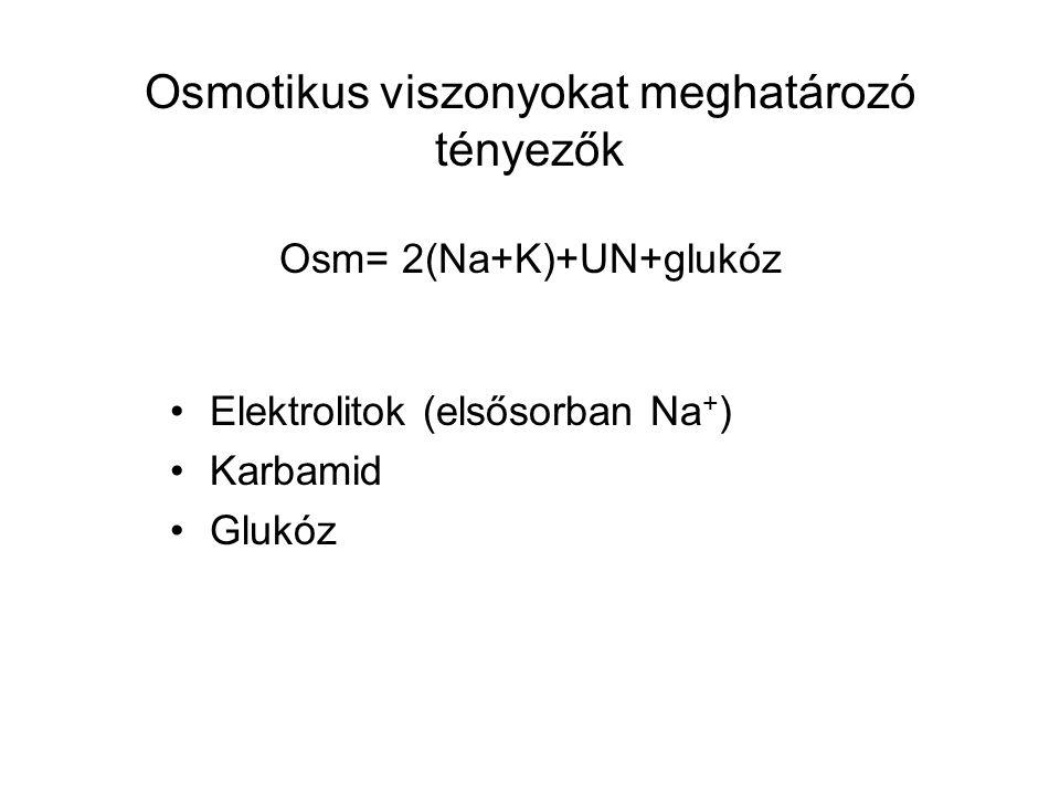 Osmotikus viszonyokat meghatározó tényezők Osm= 2(Na+K)+UN+glukóz