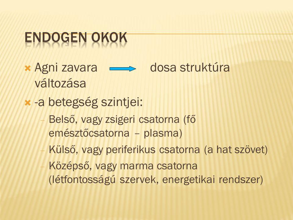 Endogen okok Agni zavara dosa struktúra változása