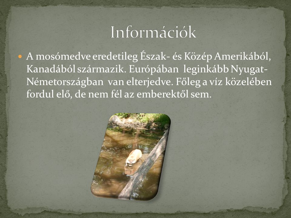 Információk