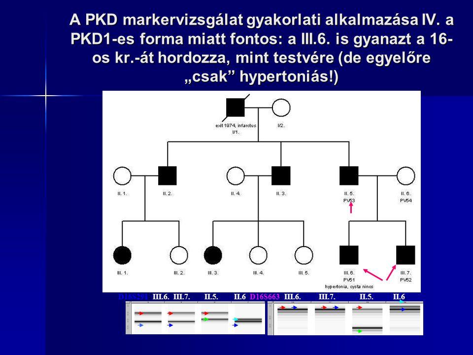 A PKD markervizsgálat gyakorlati alkalmazása IV