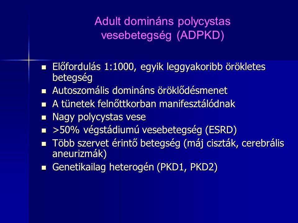 Adult domináns polycystas vesebetegség (ADPKD)