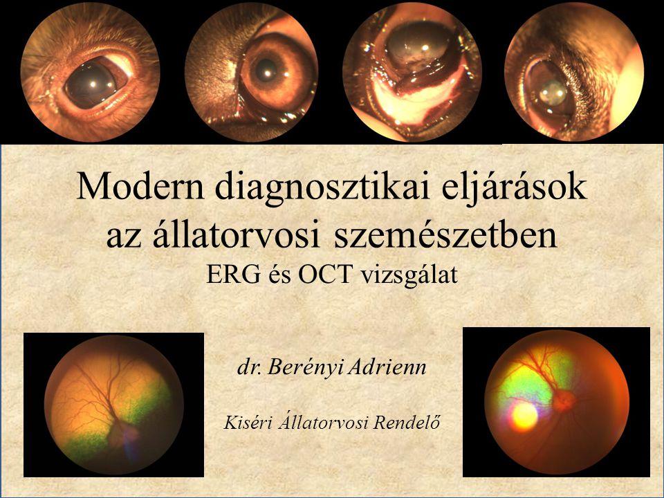 Modern diagnosztikai eljárások az állatorvosi szemészetben