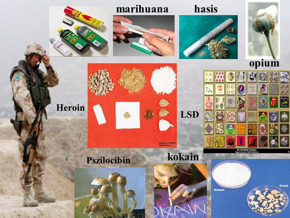 marihuana hasis opium Heroin LSD kokain Pszilocibin