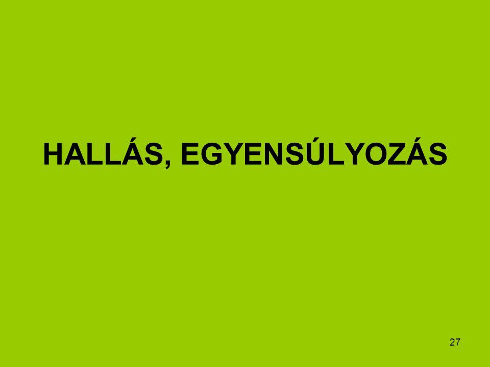 HALLÁS, EGYENSÚLYOZÁS