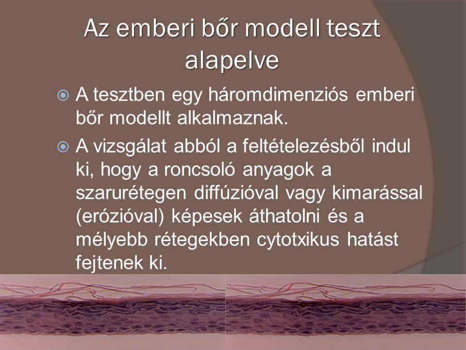 Az emberi bőr modell teszt alapelve