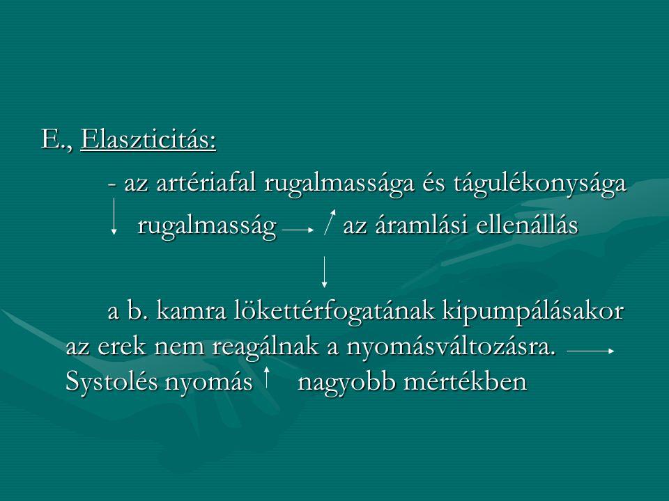 E., Elaszticitás: - az artériafal rugalmassága és tágulékonysága. rugalmasság az áramlási ellenállás.