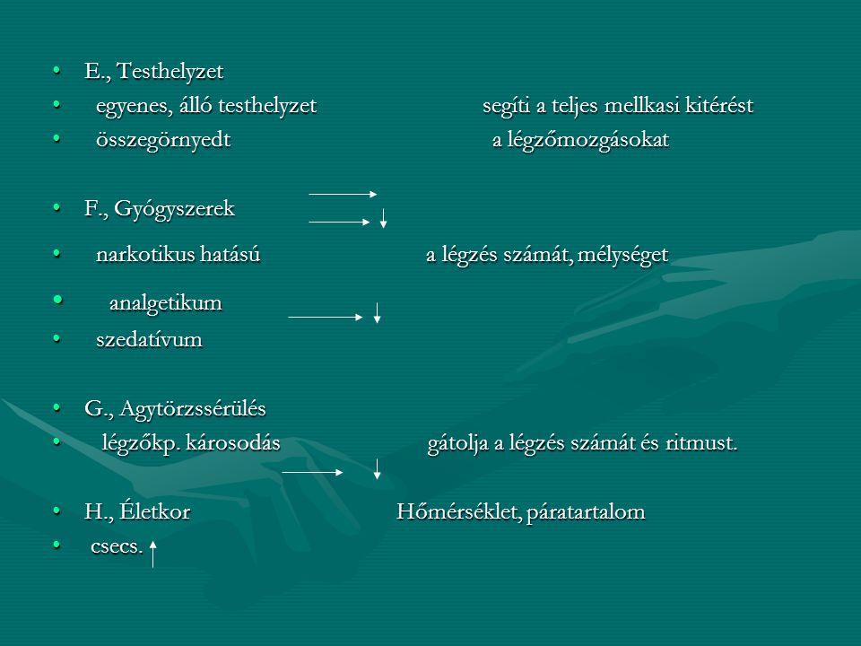 analgetikum E., Testhelyzet