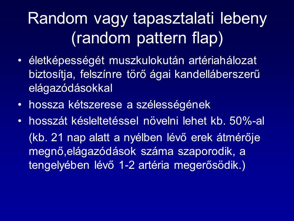 Random vagy tapasztalati lebeny (random pattern flap)