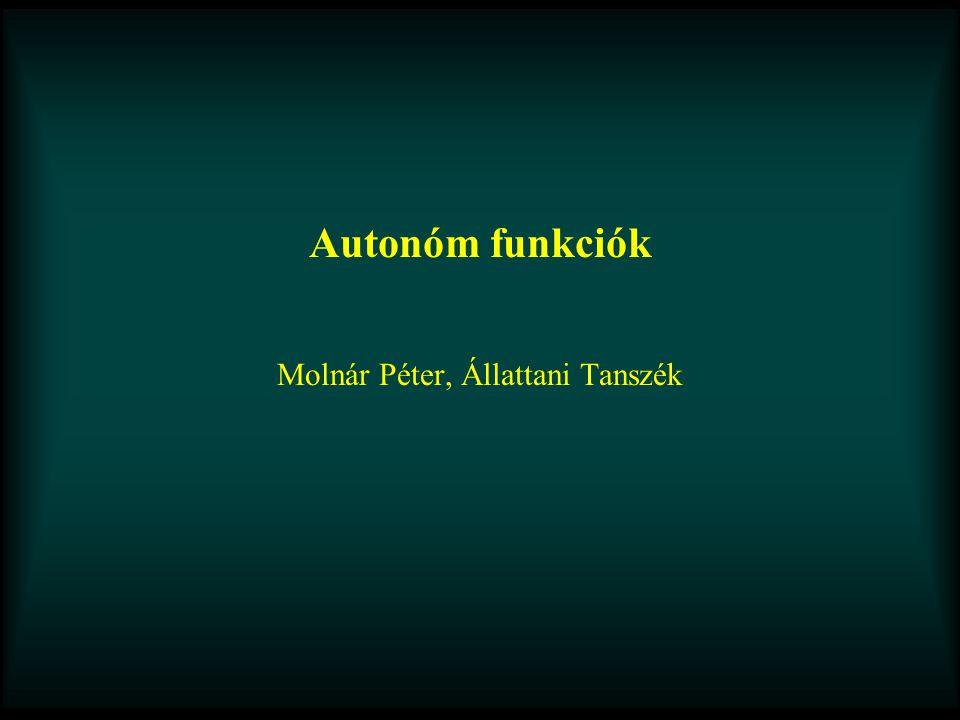 Autonóm funkciók Molnár Péter, Állattani Tanszék