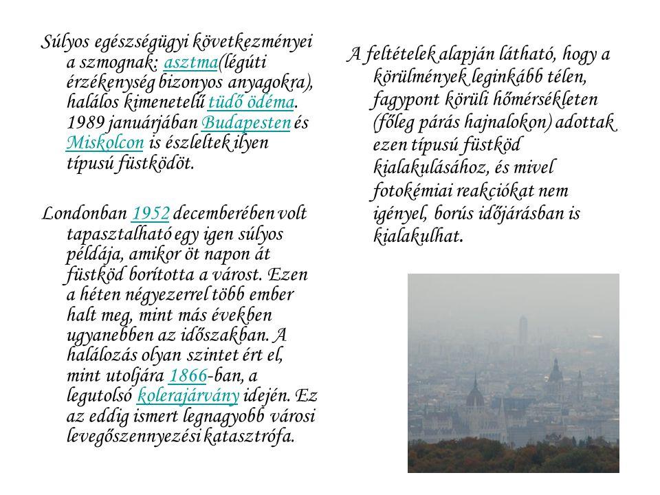 Súlyos egészségügyi következményei a szmognak: asztma(légúti érzékenység bizonyos anyagokra), halálos kimenetelű tüdő ödéma. 1989 januárjában Budapesten és Miskolcon is észleltek ilyen típusú füstködöt.