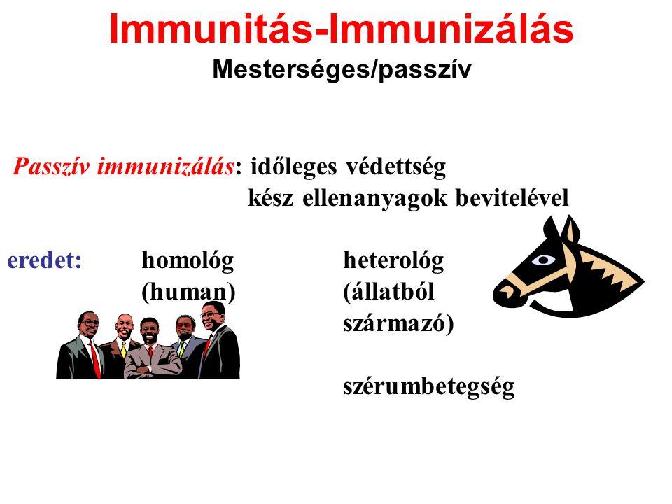 Immunitás-Immunizálás Mesterséges/passzív