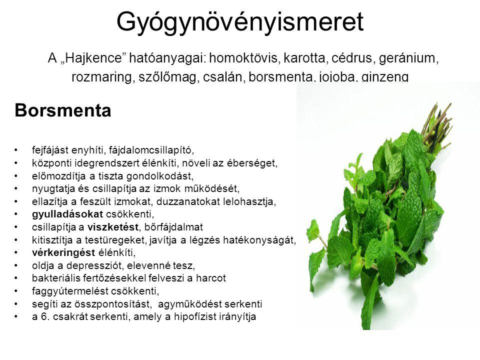 """Gyógynövényismeret A """"Hajkence hatóanyagai: homoktövis, karotta, cédrus, geránium, rozmaring, szőlőmag, csalán, borsmenta, jojoba, ginzeng"""