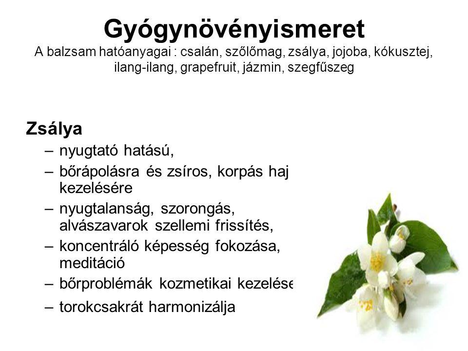 Gyógynövényismeret A balzsam hatóanyagai : csalán, szőlőmag, zsálya, jojoba, kókusztej, ilang-ilang, grapefruit, jázmin, szegfűszeg