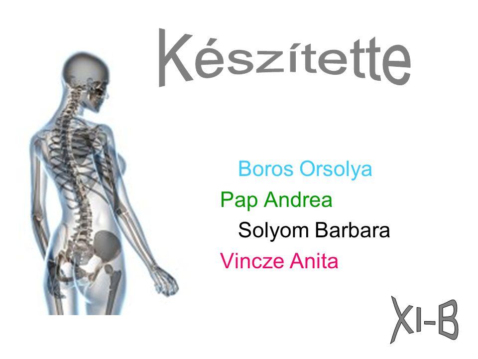 Készítette Boros Orsolya Pap Andrea Solyom Barbara Vincze Anita XI-B
