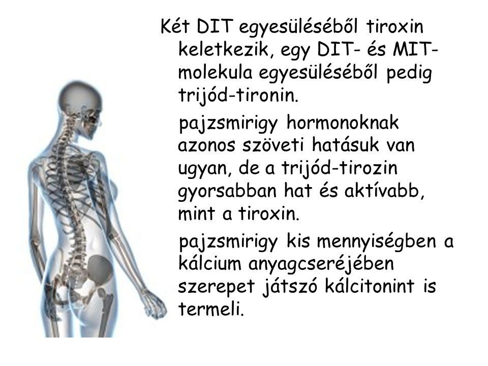 Két DIT egyesüléséből tiroxin keletkezik, egy DIT- és MIT- molekula egyesüléséből pedig trijód-tironin.