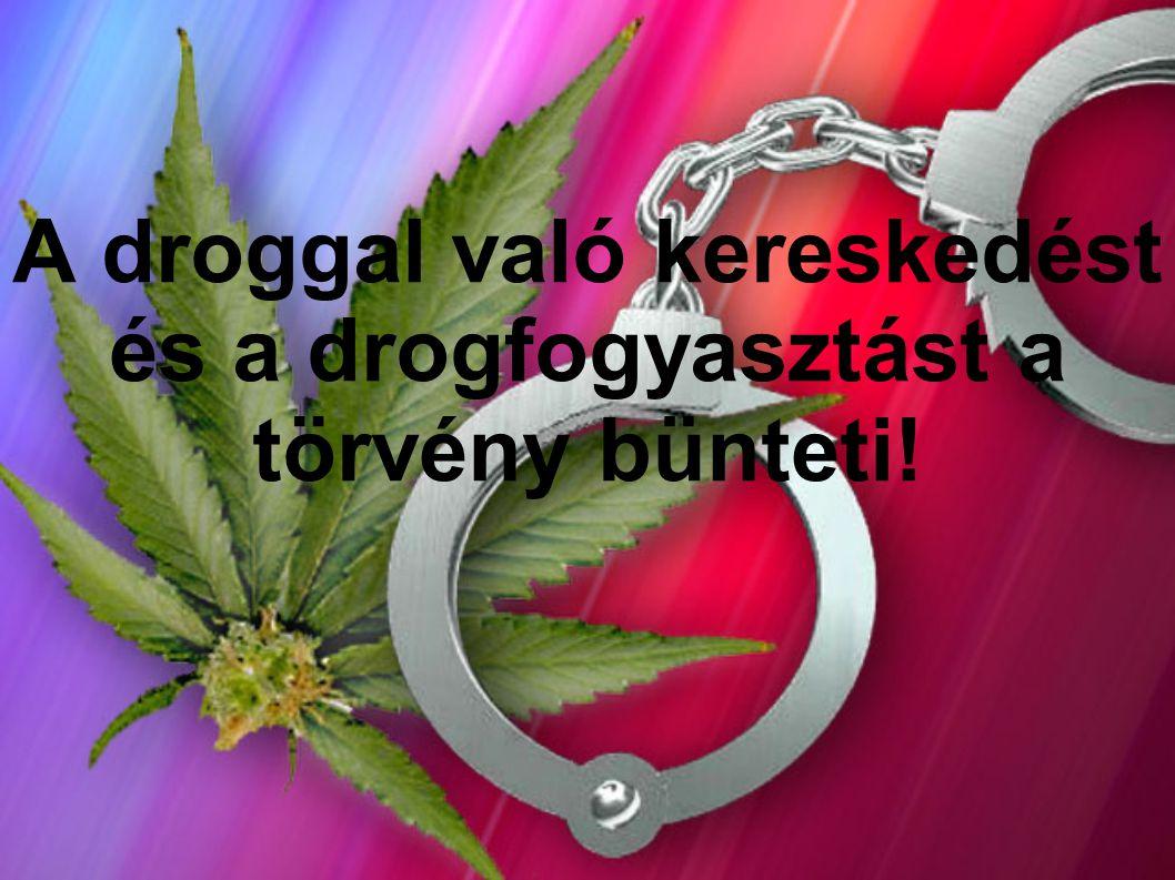 A droggal való kereskedést és a drogfogyasztást a törvény bünteti!