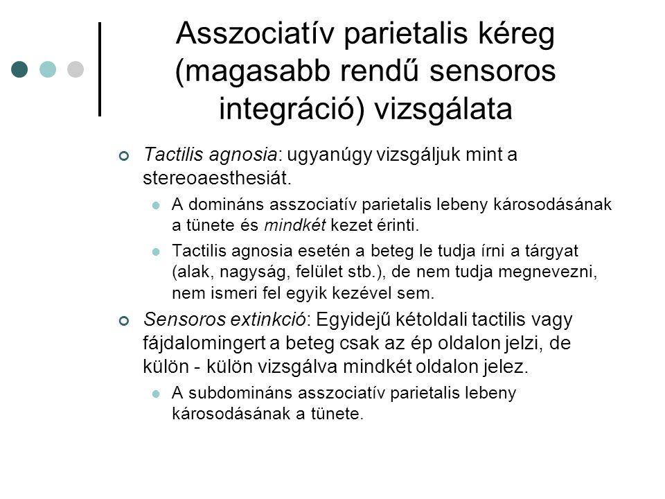 Asszociatív parietalis kéreg (magasabb rendű sensoros integráció) vizsgálata