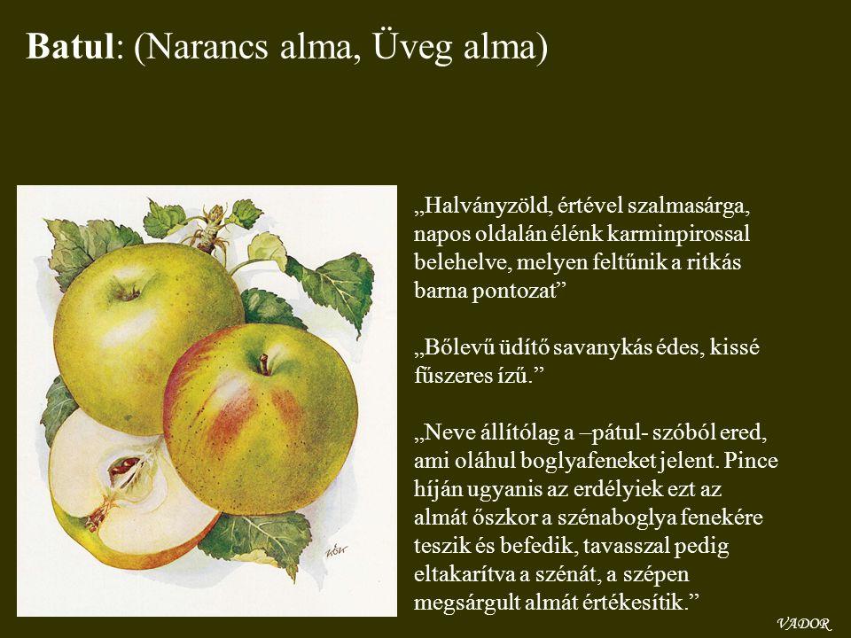 Batul: (Narancs alma, Üveg alma)