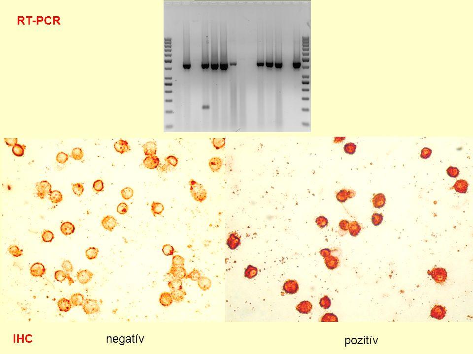 RT-PCR IHC negatív pozitív