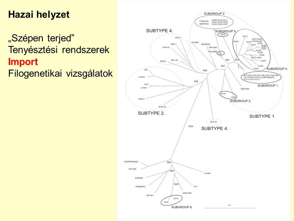 """Hazai helyzet """"Szépen terjed Tenyésztési rendszerek Import Filogenetikai vizsgálatok"""